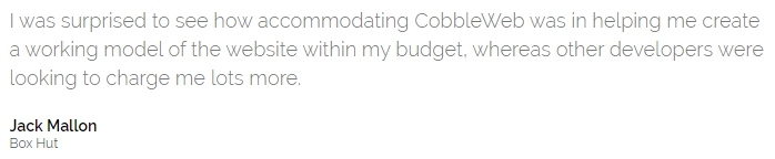CobbleWeb Testimonial